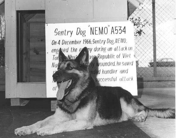 December 4, 1966  War Dogs of Vietnam