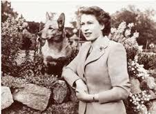 Dorothy Eustis