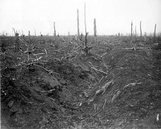 German trench from the Somme battlefield
