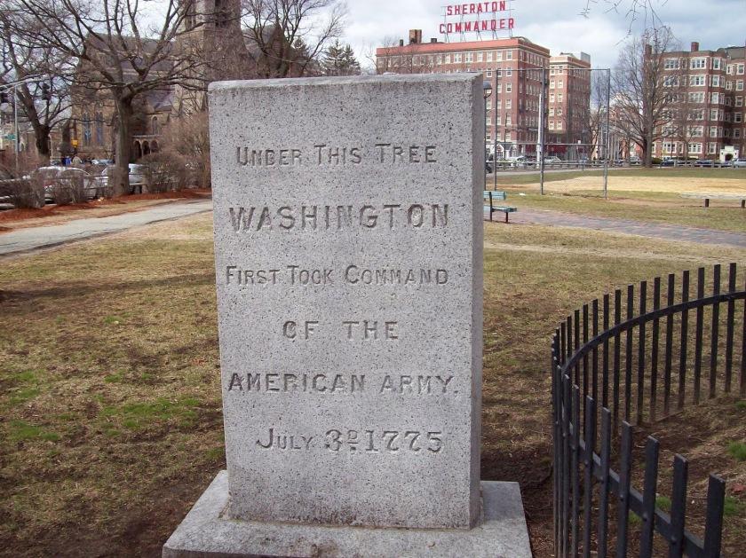 Washington Elm marker