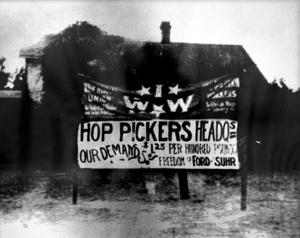 August 3, 1913 Wheatland Hop Riot