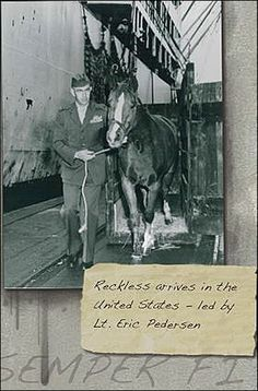 Sergeant Reckless, arriving