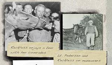 Sergeant Reckless ejoys a beer