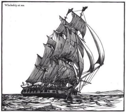 Whaleship at sea