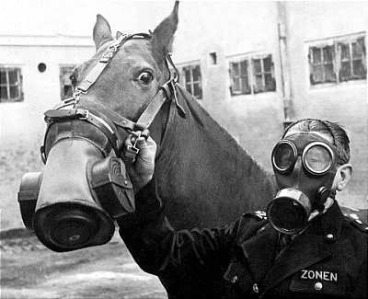 Gas mask, horse