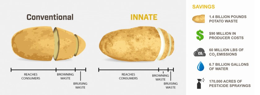 potato-infographic