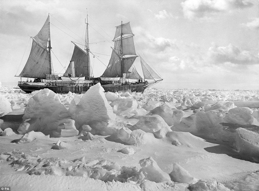 Shackleton 5