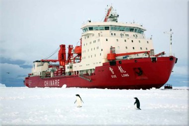 Chinese-ice-breaker-Xue-Long-that-helped-rescue-passengers-stranded-on-the-Akademik-Shokalskiy-vessel-in-Antarctica-is-now-stuck-itself