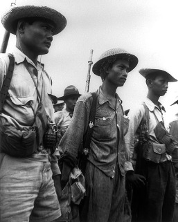 Pajota's_Guerrillas