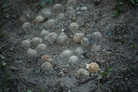 cluster-bombs-in-laos_400x267