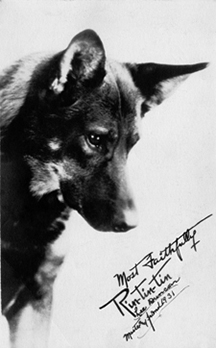 Rin Tin Tin signed photo