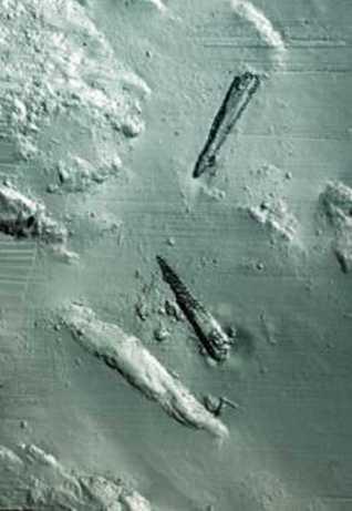 U-864 Wreck