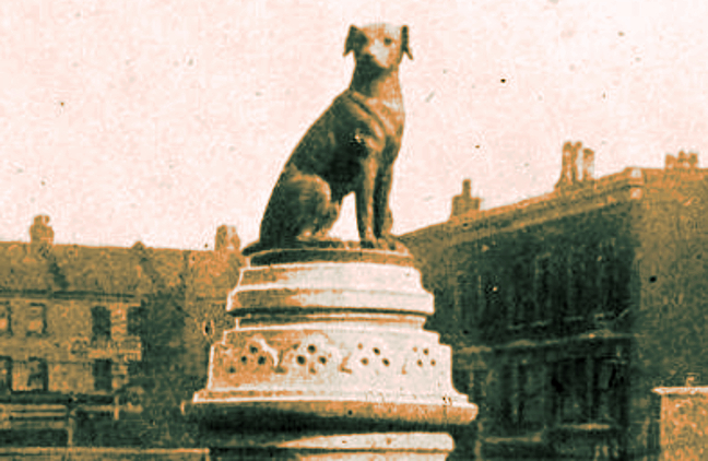 March 9, 1910 Brown Dog