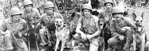 March 13, 1942  Dogs of War