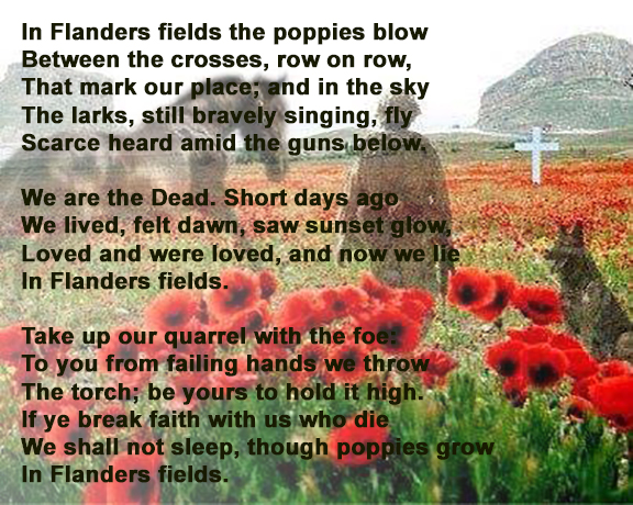 war-poppies