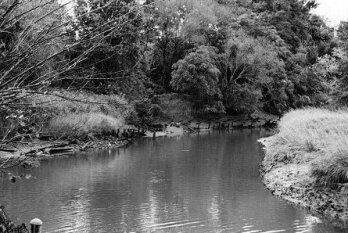 Matawan Creek