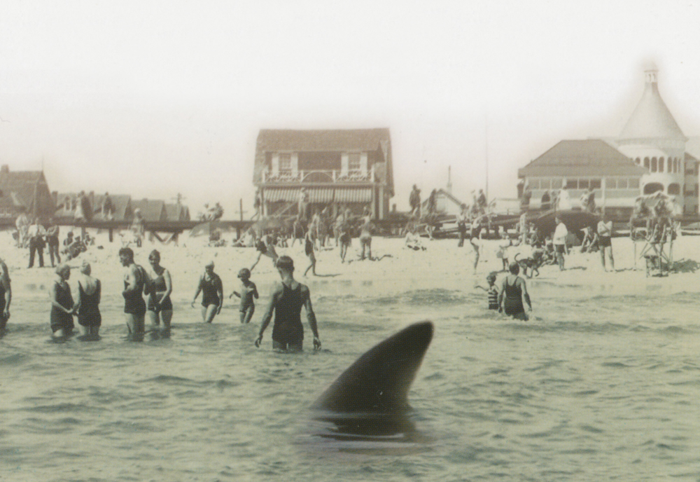 July 1, 1916 Jersey Shore
