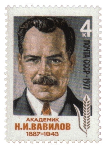 USSR-Stamp-1977-NIVavilov