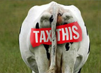 tax-this-cow1