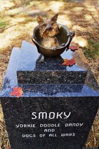 o-SMOKEY7-570