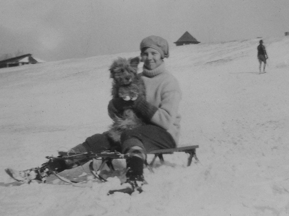 rags-the-dog, sledding