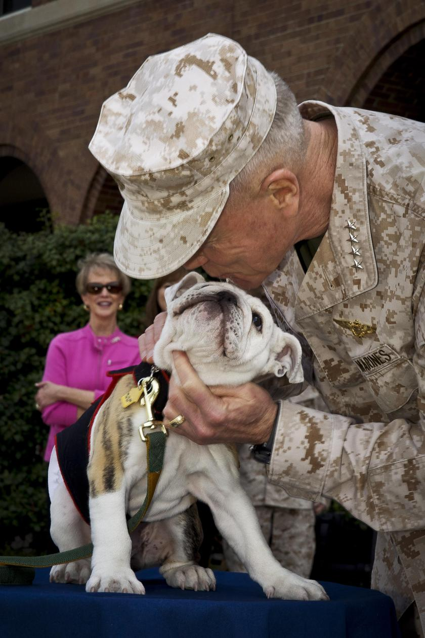 marines-chesty-bulldog.jpg
