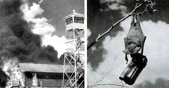 December 18, 1943 BatBomb