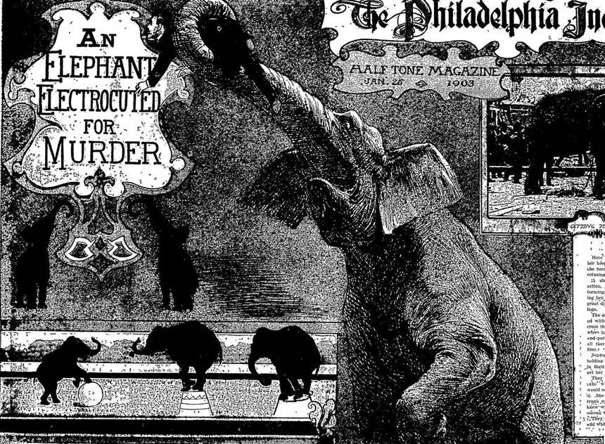 January 4, 1903 Electrocuting an Elephant