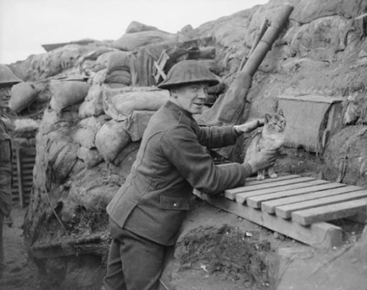 Gunner with the regimental cat in a trench in Cambrin, France, February 6th, 1918.