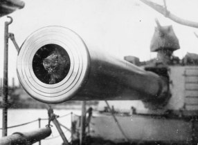Togo, ships cat aboard the HMS Dreadnought