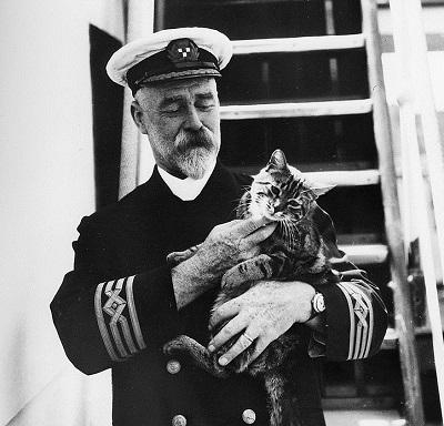 Ship_cat_1