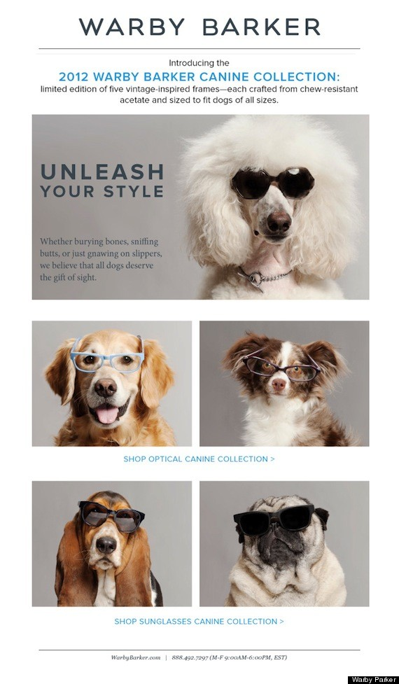 Warby-Barker-Canine-Sunglasses-April-Fools