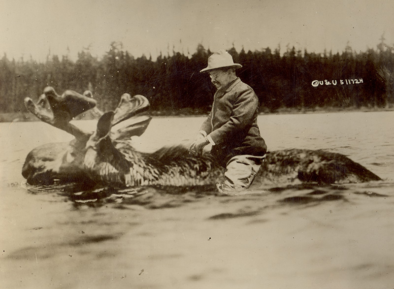 October 14, 1912  To Kill a Bull Moose