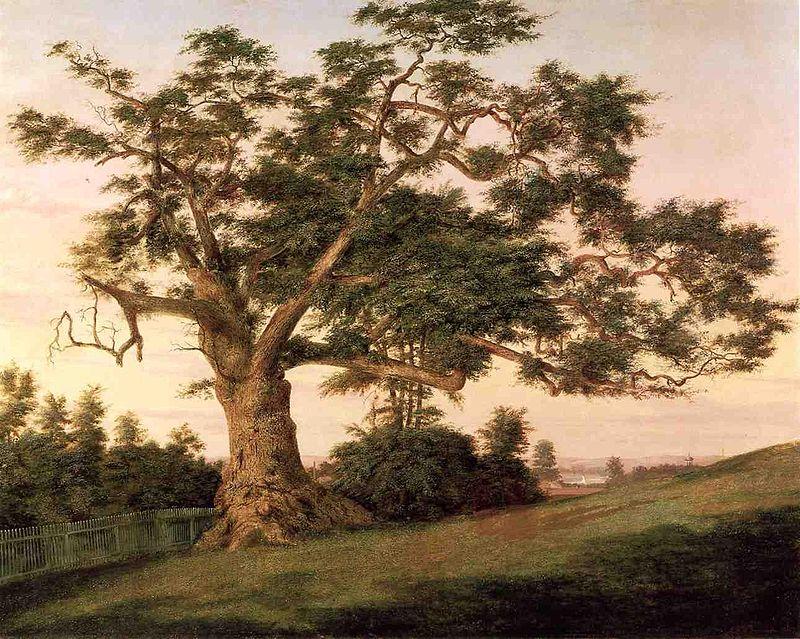 May 12, 1864  A MightyOak